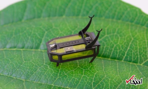 میکرو ربات حشره ای چیست؟